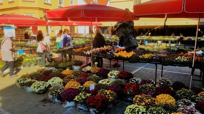 il mercato all'aperto di dolac