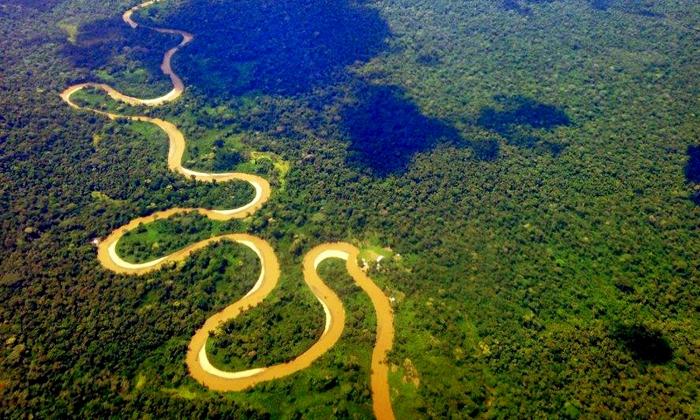 veduta dall'alto della foresta amazzonica