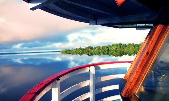 vista dalla barca vero la foresta amazzonica