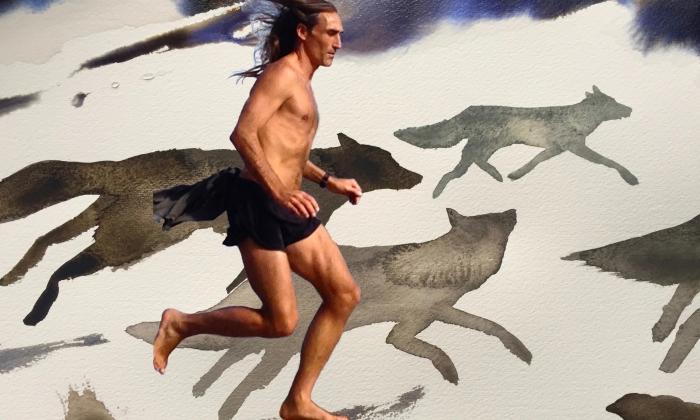 folco che corre coi lupi