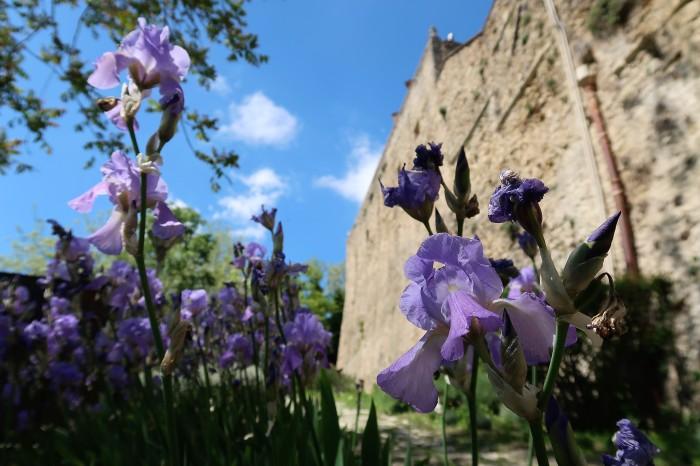 castello vigoleno borgo medievale gita